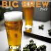Big Brew 2013 Poster