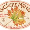 Anchor BigLeaf Maple Autumn Red