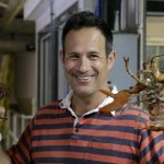 Dogfish Head Choc Lobster Hits Limited Draft Distribution