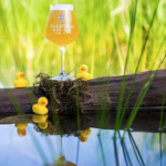 The Lost Abbey Duck Duck Gooze 2016 Release Info