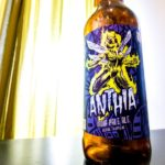 Four Brewers   The 4B Flight: Unsung Brewing Co. – Anthia