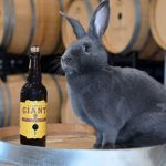 Odell Brewing Releases Flemish Giant Today