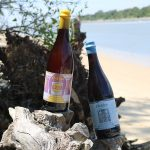 Cape May Brewing Releases Phantom Crew & Higbee Next Weekend