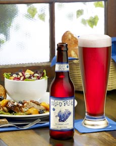 Review - Blue Dawg Wild Blue Blueberry Ale