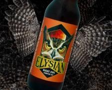 Elysian Brewing - Night Owl Pumpkin Ale