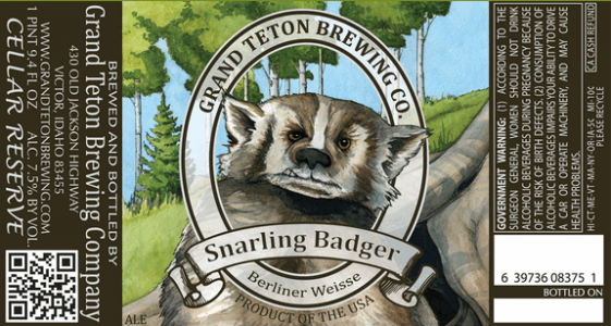 Grand Teton Snarling Badger