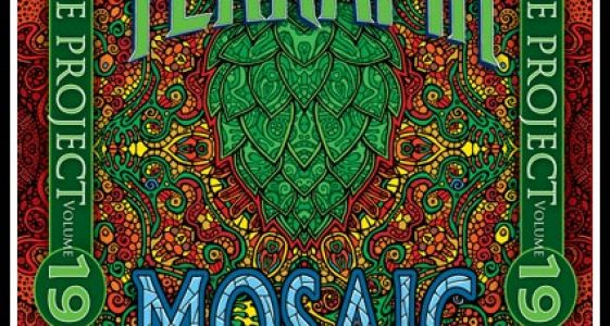 Terrapin Side Project 19 Mosaic