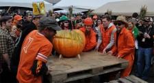 Elysian Great Pumpkin Fest 2013