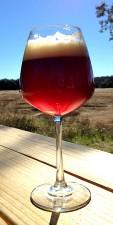 Jester King - Ambree Farmhouse Amber Ale (glass)