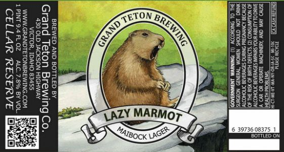 Grand Teton Lazy Marmot