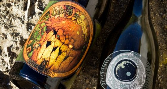 Jester King Beers-square-small