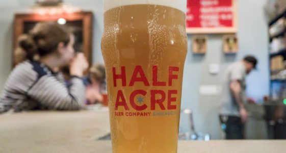 Half Acre Brewing Beer Glass