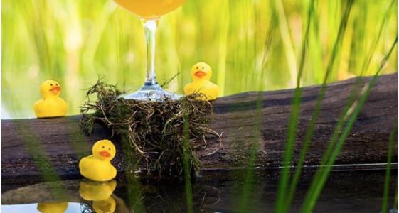 The Lost Abbey Duck Duck Gooze 2016