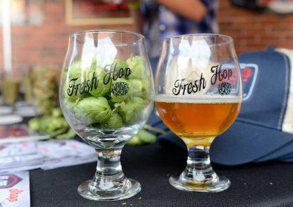 11th Annual Fresh Hop Festival Denver