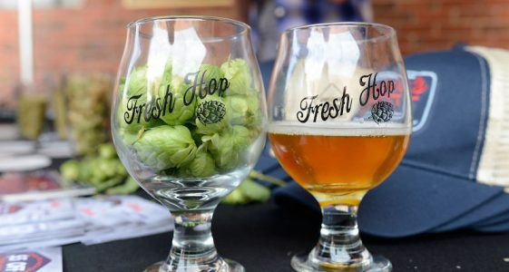 11th Annual Fresh Hop Festival Denver