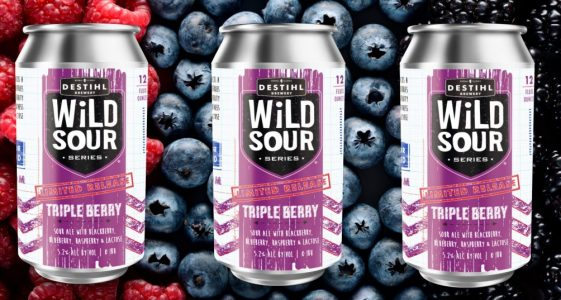 DESTIHL WILD SOUR TRIPLE BERRY
