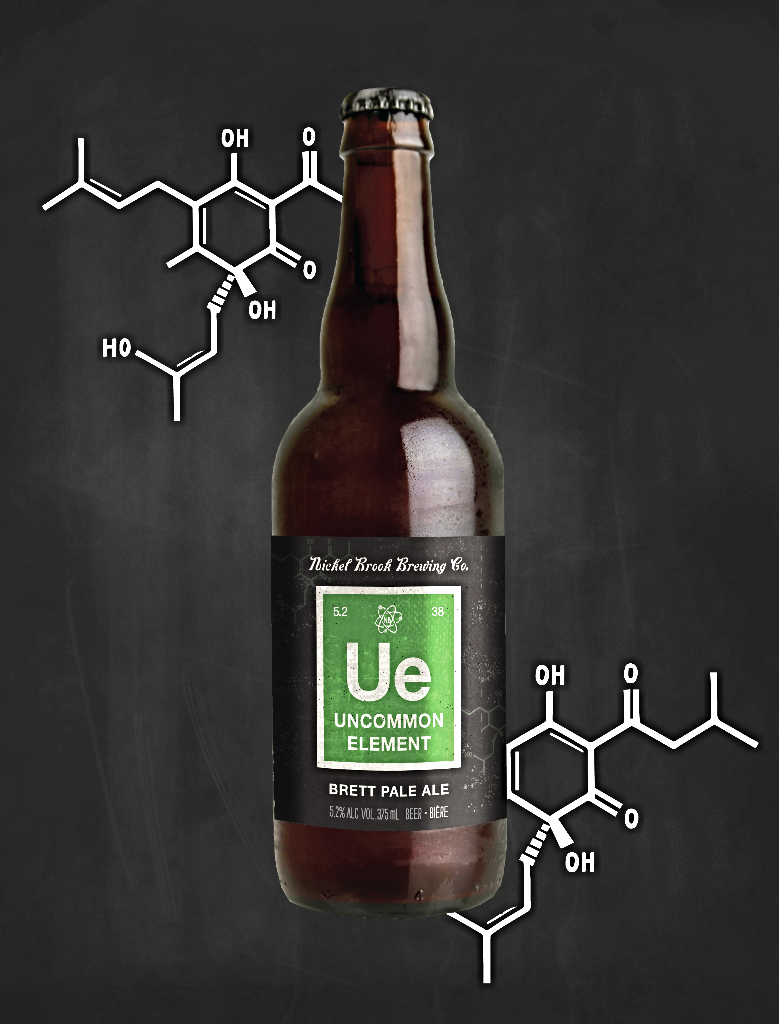 Nickel Brook Brewing Co. - Uncommon Element Brett Pale Ale