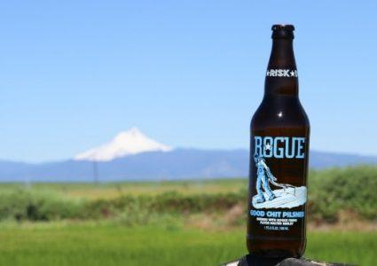 Rogue Ales - Good Chit Pilsner