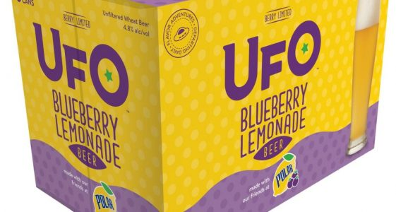 UFO Blueberry Lemonade Beer