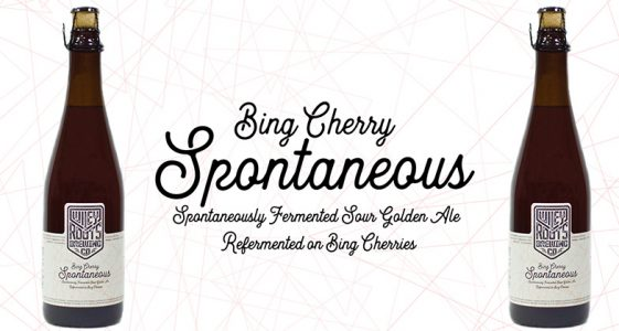 Wiley Roots - Bing Cherry Spontaneous